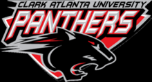 Team CAU Panthers's avatar